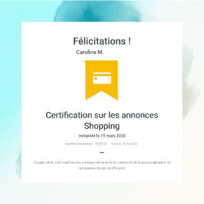 Consultant adwords certifié sur le réseau Google Shopping