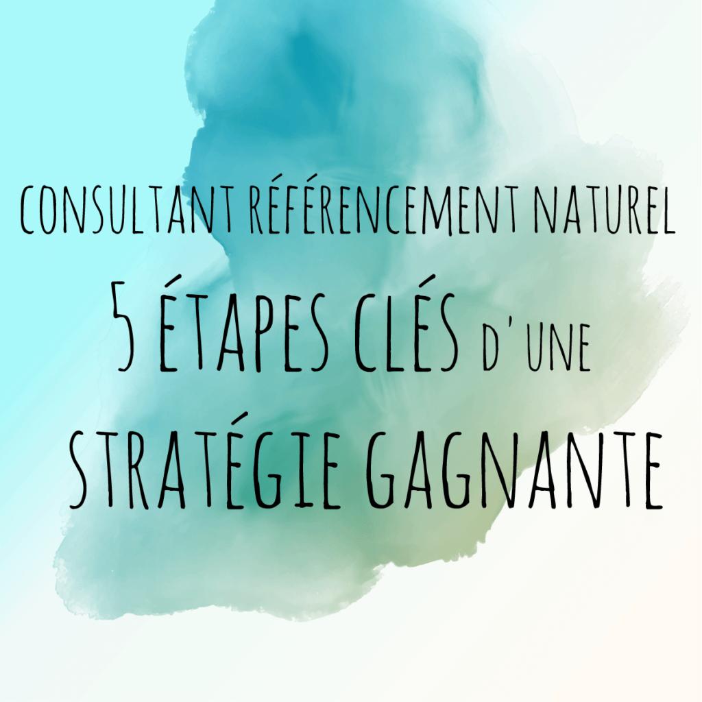 Consultant référencement naturel : les étapes clés d'une stratégie gagnante